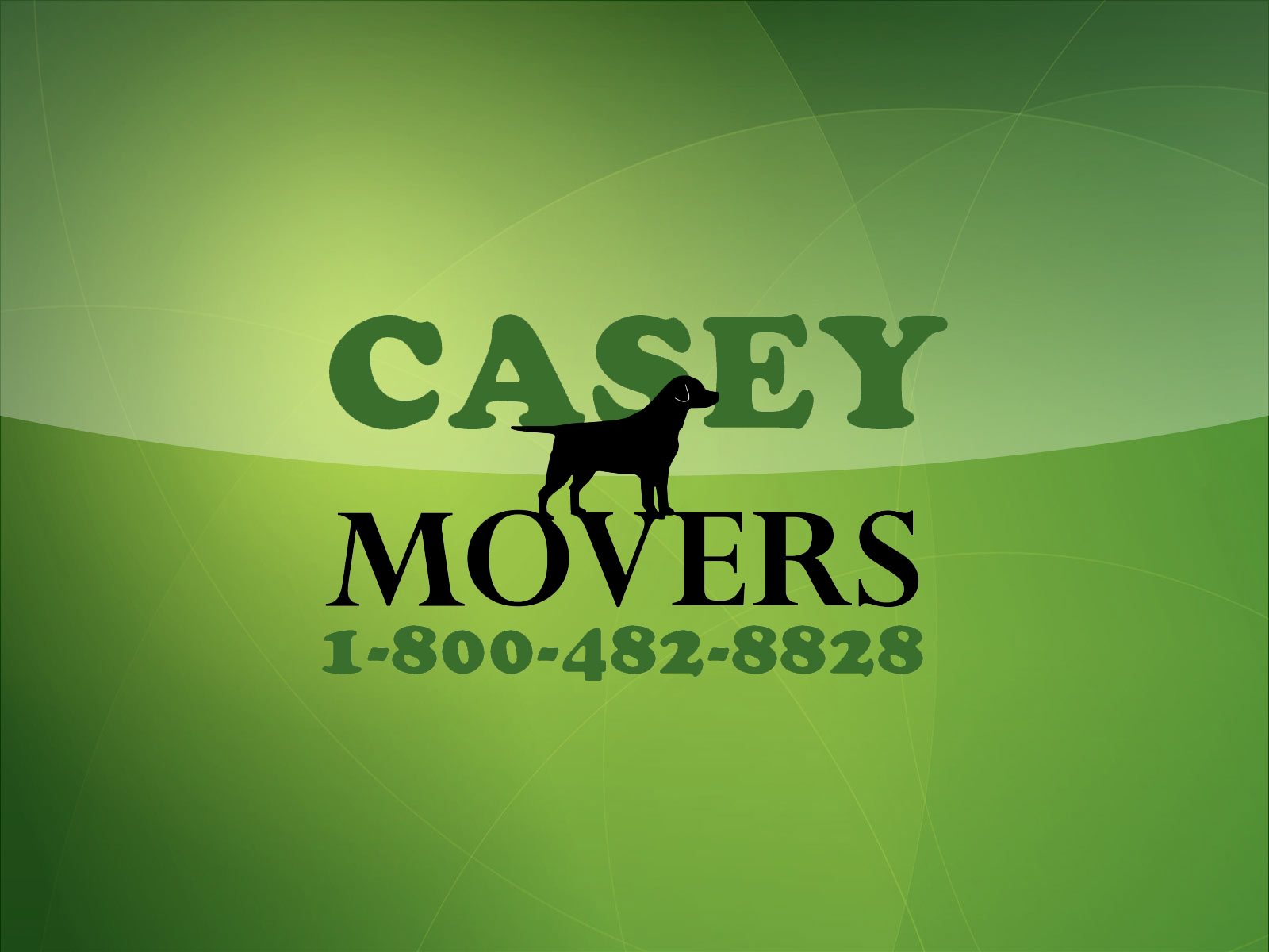 The Casey Movers Desktop Background